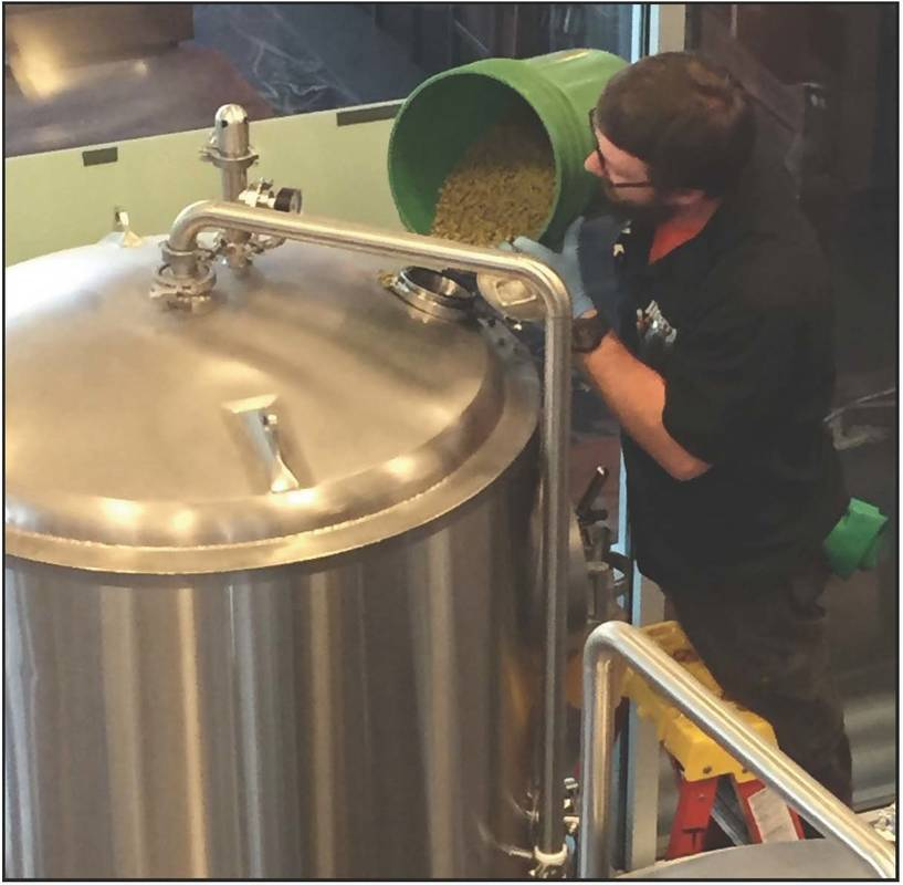 strata ipa brewing